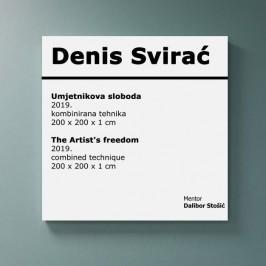 Umjetnikova sloboda