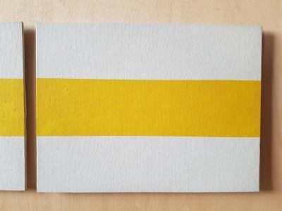 Žuta linija