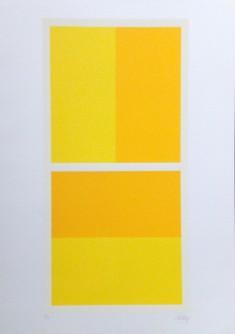 Žuta kompozicija