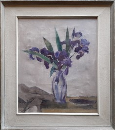 Irisi