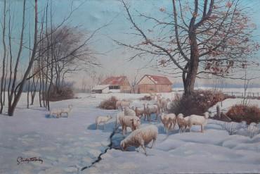 Ovce u snijegu