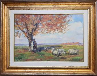 Krajolik sa ovčicama